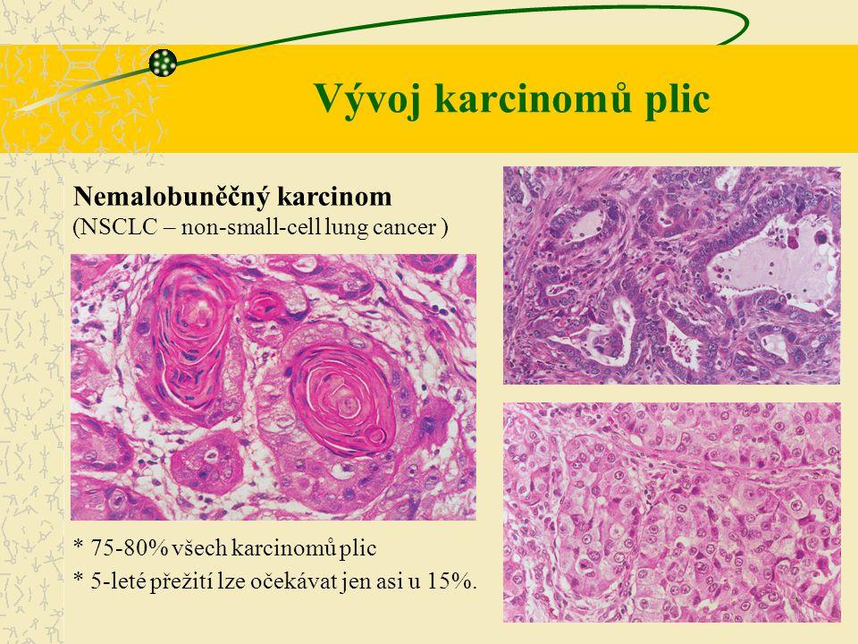 Nemalobuněčný karcinom (NSCLC – non-small-cell lung cancer ) * 75-80% všech karcinomů plic * 5-leté přežití lze očekávat jen asi u 15%. Vývoj karcinom