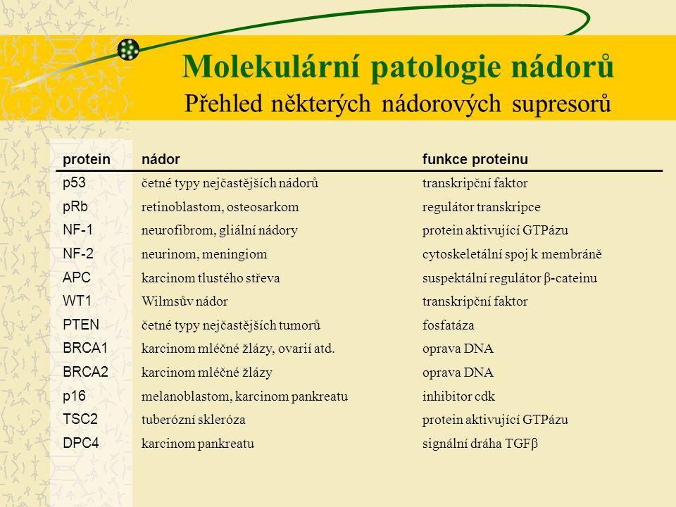 Molekulární patologie nádorů Přehled některých nádorových supresorů proteinnádorfunkce proteinu p53 četné typy nejčastějších nádorůtranskripční faktor