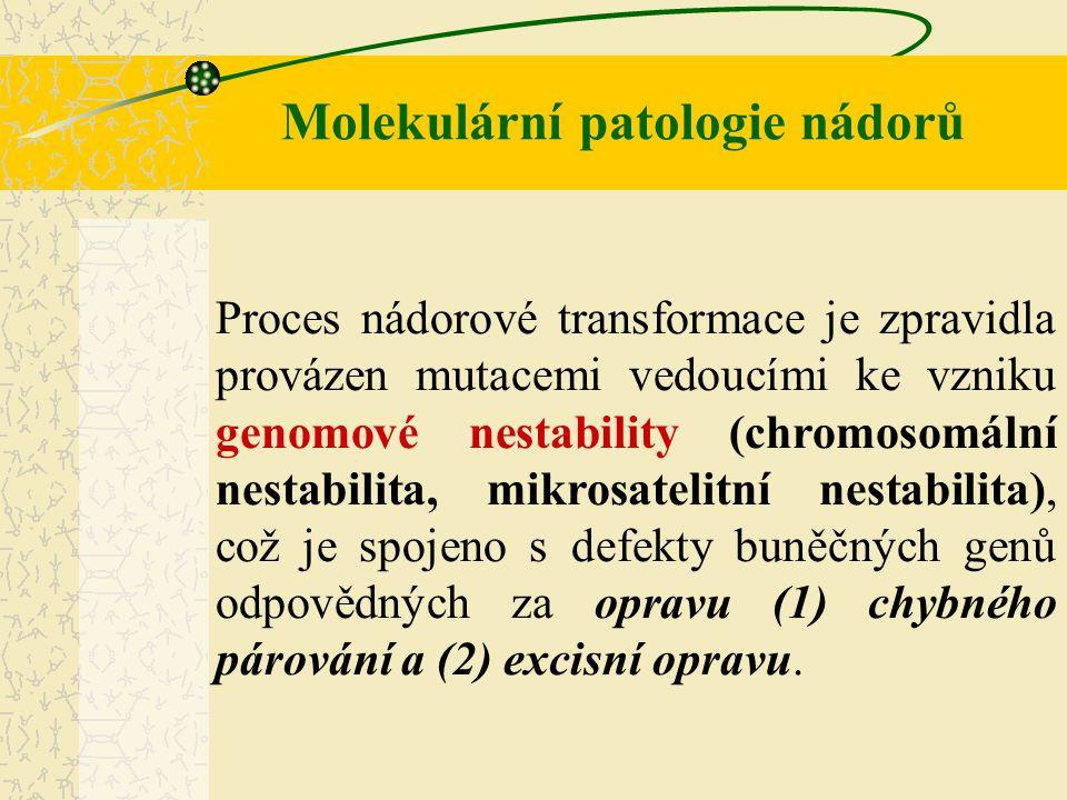Molekulární patologie nádorů Kromě této skupiny defektů se mohou vývoje nádorů účastnit i poruchy genů odpovědných za produkci různých proteolytických enzymů, které se účastní procesů umožňujících: (1) ztrátu buněčné kohezivity a adhezivity (2) invazivní růst (3) metastazování