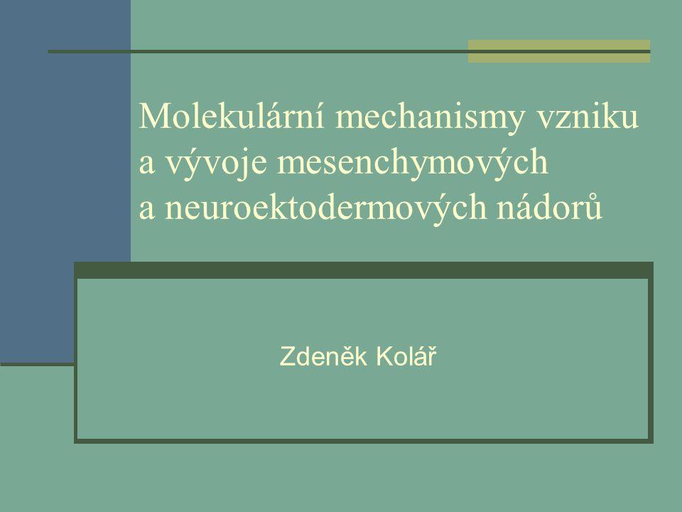 Molekulární mechanismy vzniku a vývoje mesenchymových a neuroektodermových nádorů Zdeněk Kolář