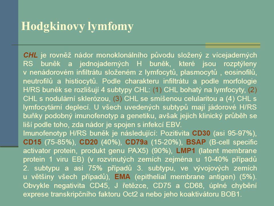 Hodgkinovy lymfomy CHL je rovněž nádor monoklonálního původu složený z vícejaderných RS buněk a jednojaderných H buněk, které jsou rozptýleny v nenádo