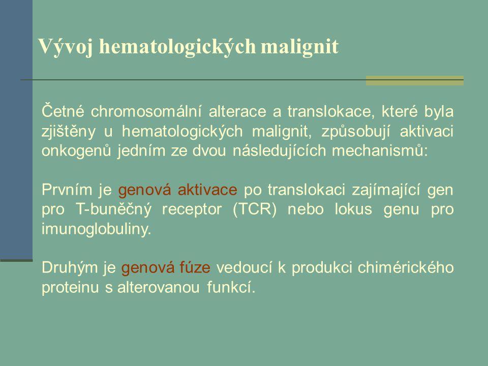 Vývoj hematologických malignit Četné chromosomální alterace a translokace, které byla zjištěny u hematologických malignit, způsobují aktivaci onkogenů