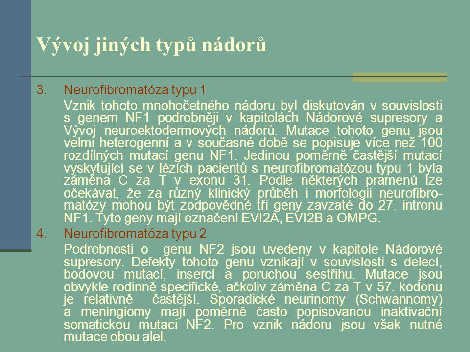 Vývoj jiných typů nádorů 3.Neurofibromatóza typu 1 Vznik tohoto mnohočetného nádoru byl diskutován v souvislosti s genem NF1 podrobněji v kapitolách N