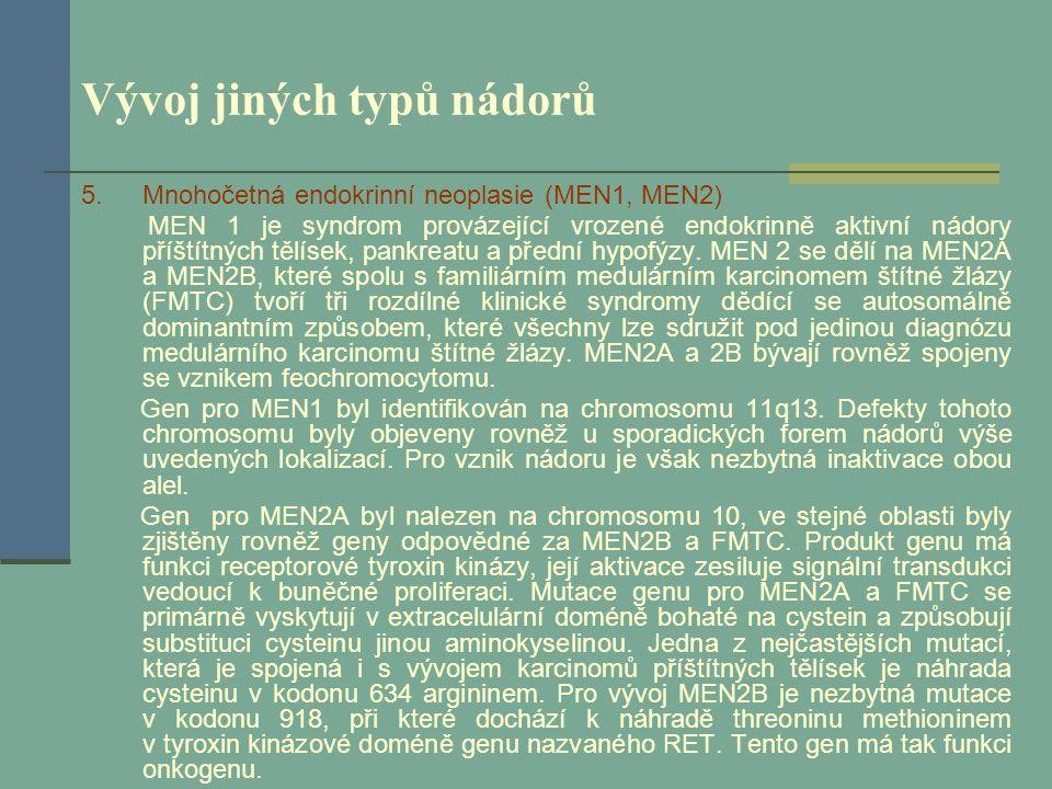 Vývoj jiných typů nádorů 5.Mnohočetná endokrinní neoplasie (MEN1, MEN2) MEN 1 je syndrom provázející vrozené endokrinně aktivní nádory příštítných těl
