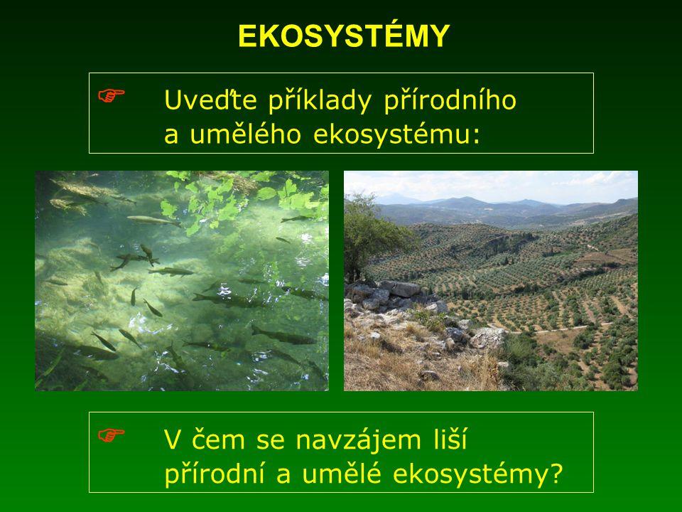 EKOSYSTÉMY  Uveďte příklady přírodního a umělého ekosystému:  V čem se navzájem liší přírodní a umělé ekosystémy?