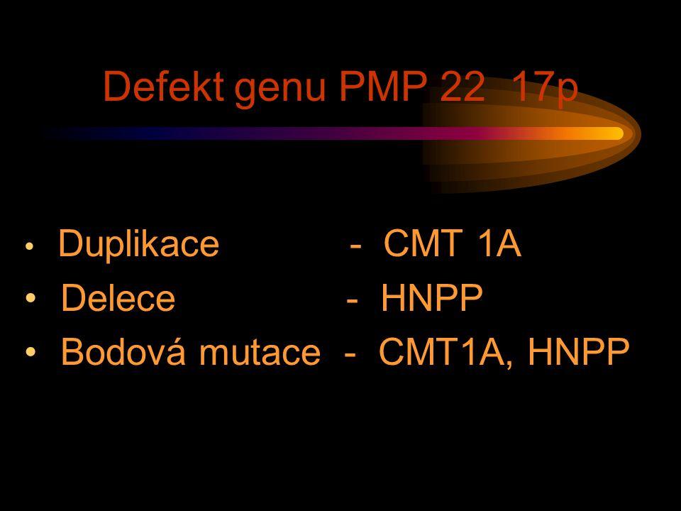 Defekt genu PMP 22 17p Duplikace - CMT 1A Delece - HNPP Bodová mutace - CMT1A, HNPP