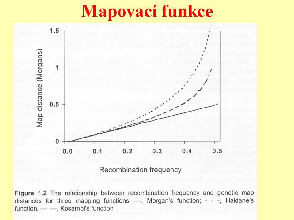 Faktory ovlivňující vznik a degradaci LD v populaci Hlavní faktory vytvářející LD v populaci mutace, selekce, křížení (migrace) Hlavním faktor degradující LD rekombinace LD mezi vzdálenými markery eroduje rychle, mezi blízkými markery (geny) pomalu.