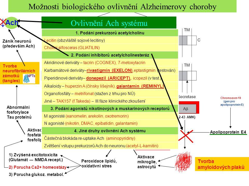 Chromozom 14 (presenilin 1) Chromozom 1 (presenilin 2) (42-43 AMK) Apolipoprotein E4 Chromozom 19 (gen pro apolipoprotein E) Aktivace mikroglie, astro