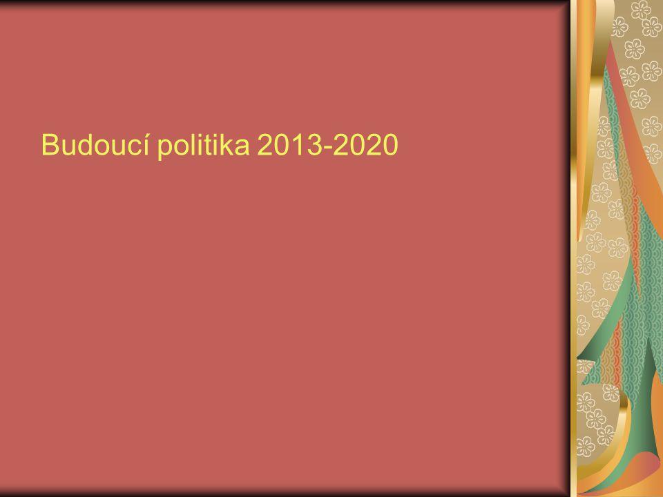 Budoucí politika 2013-2020