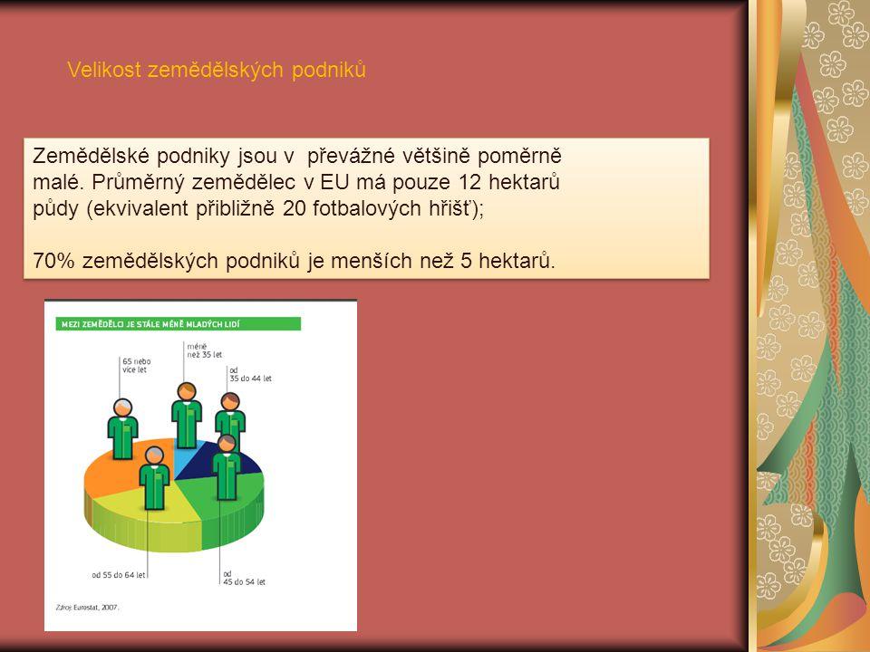 5.Postavení zemědělců ve výrobní vertikále Ing.