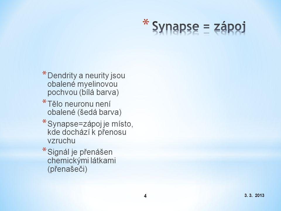 3. 3. 2013 4 * Dendrity a neurity jsou obalené myelinovou pochvou (bílá barva) * Tělo neuronu není obalené (šedá barva) * Synapse=zápoj je místo, kde