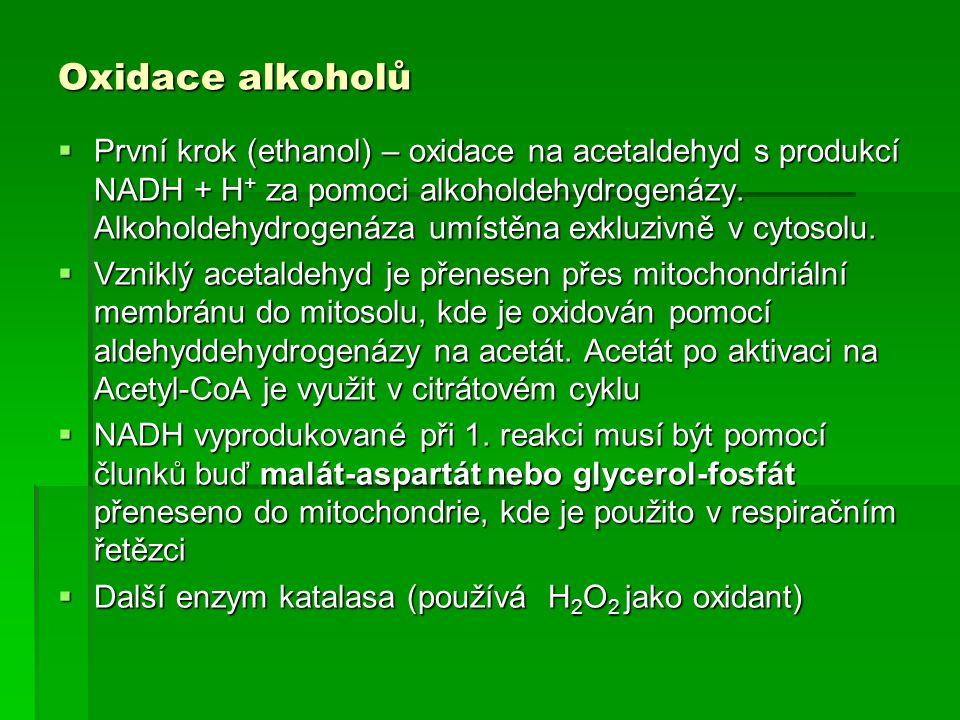 Oxidace alkoholů  První krok (ethanol) – oxidace na acetaldehyd s produkcí NADH + H + za pomoci alkoholdehydrogenázy. Alkoholdehydrogenáza umístěna e