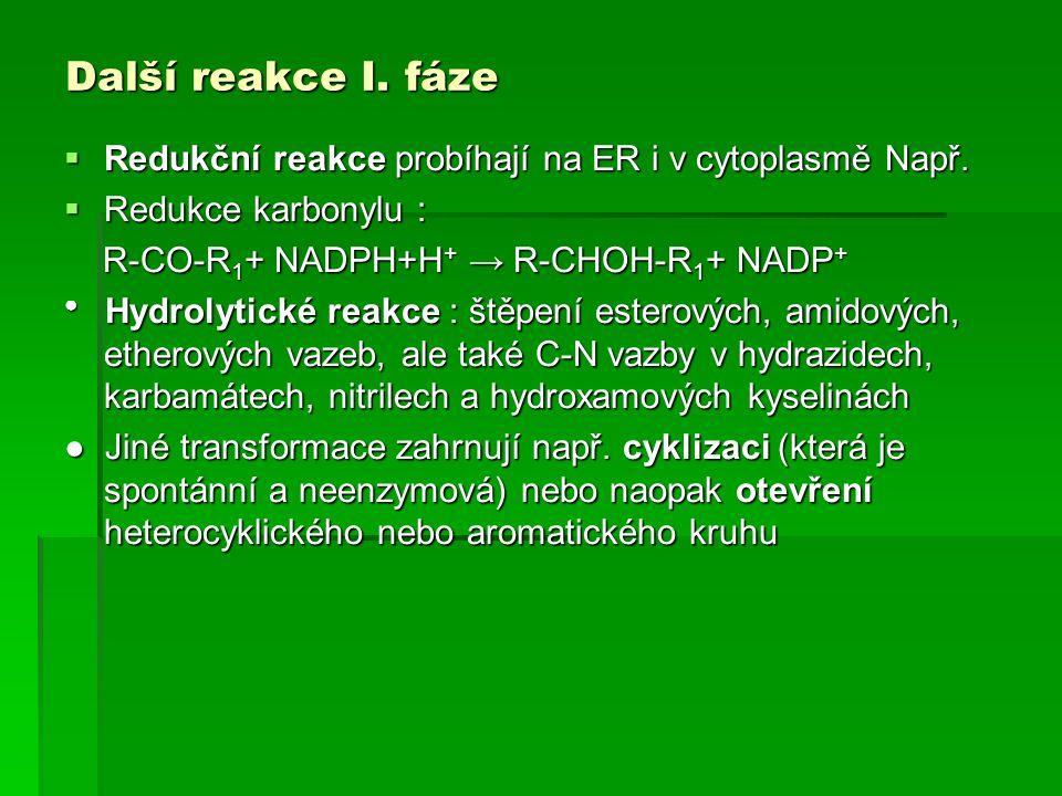 Další reakce I. fáze  Redukční reakce probíhají na ER i v cytoplasmě Např.  Redukce karbonylu : R-CO-R 1 + NADPH+H + → R-CHOH-R 1 + NADP + R-CO-R 1