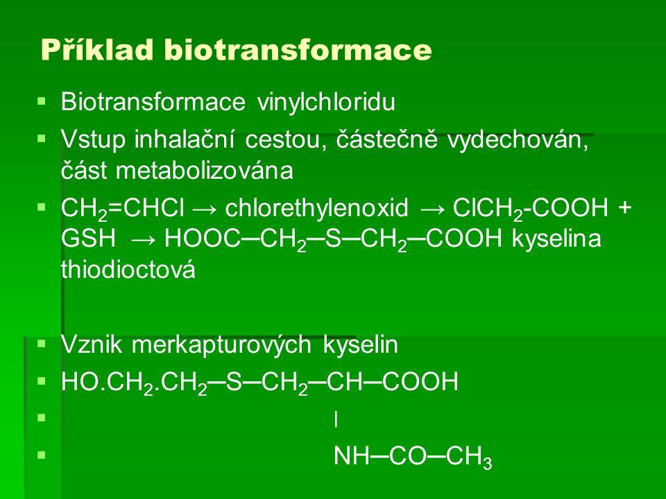 Příklad biotransformace  Biotransformace vinylchloridu  Vstup inhalační cestou, částečně vydechován, část metabolizována  CH 2 =CHCl → chlorethylen