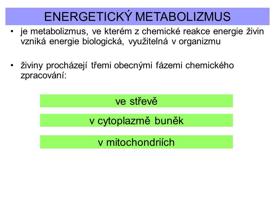 ENERGETICKÝ METABOLIZMUS je metabolizmus, ve kterém z chemické reakce energie živin vzniká energie biologická, využitelná v organizmu živiny procházej