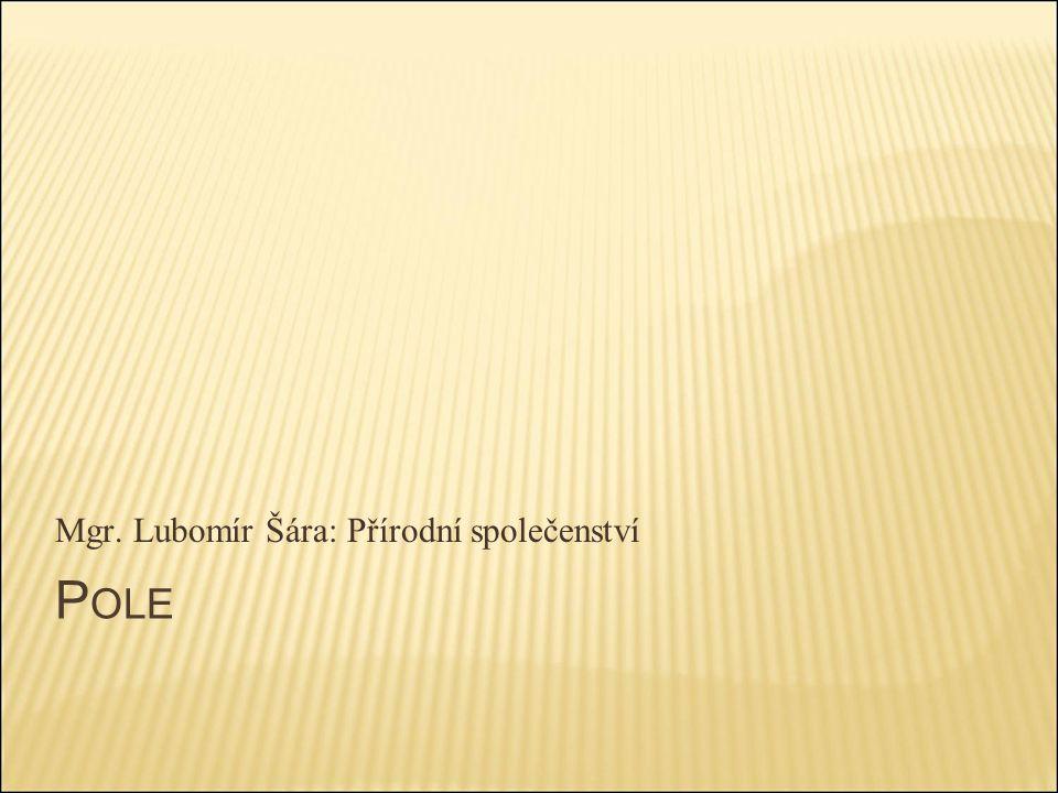 P OLE Mgr. Lubomír Šára: Přírodní společenství