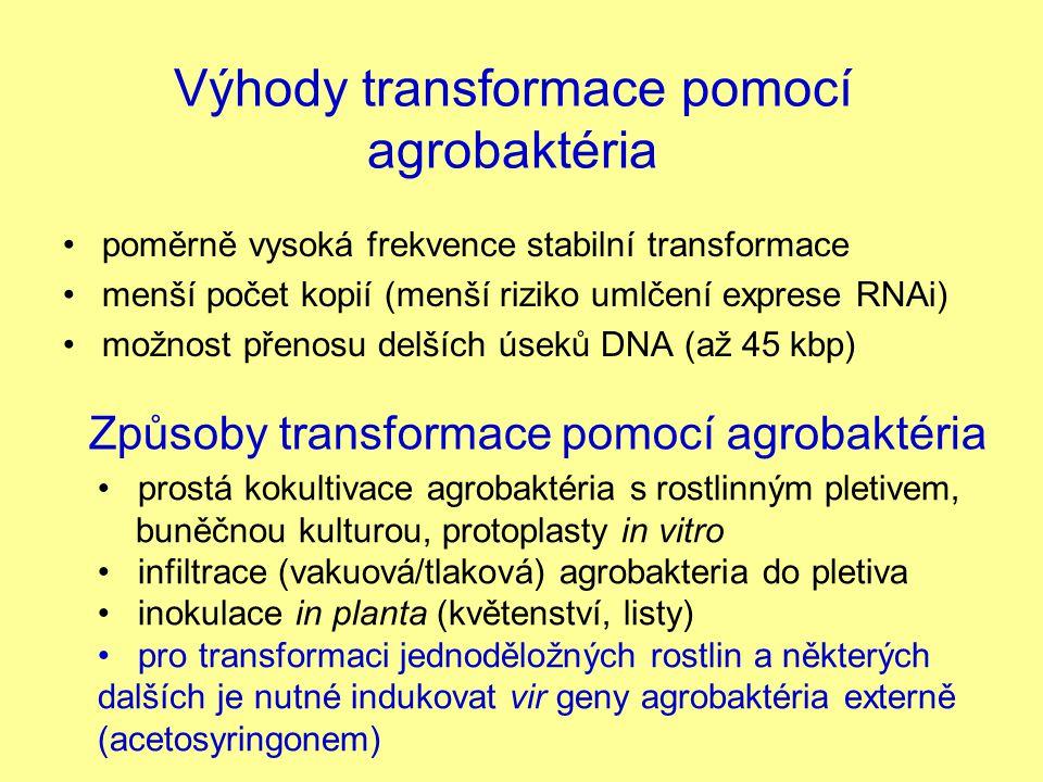 Výhody transformace pomocí agrobaktéria poměrně vysoká frekvence stabilní transformace menší počet kopií (menší riziko umlčení exprese RNAi) možnost p
