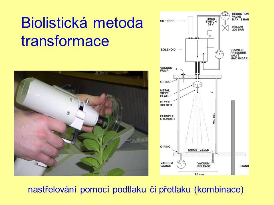 Biolistická metoda transformace nastřelování pomocí podtlaku či přetlaku (kombinace)
