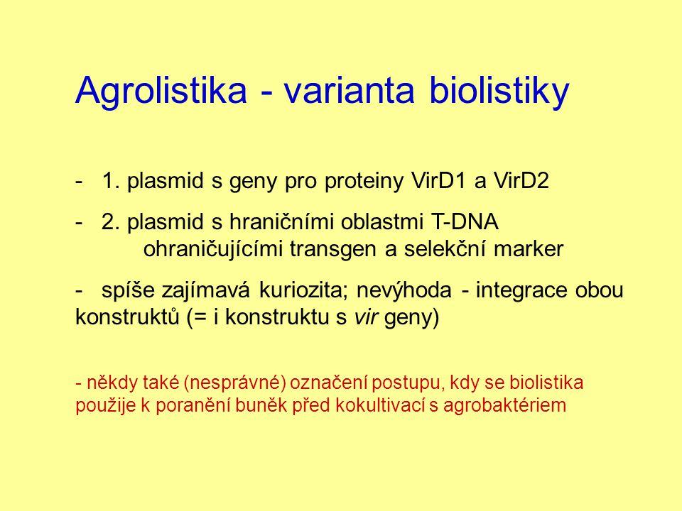 Agrolistika - varianta biolistiky - 1. plasmid s geny pro proteiny VirD1 a VirD2 - 2. plasmid s hraničními oblastmi T-DNA ohraničujícími transgen a se