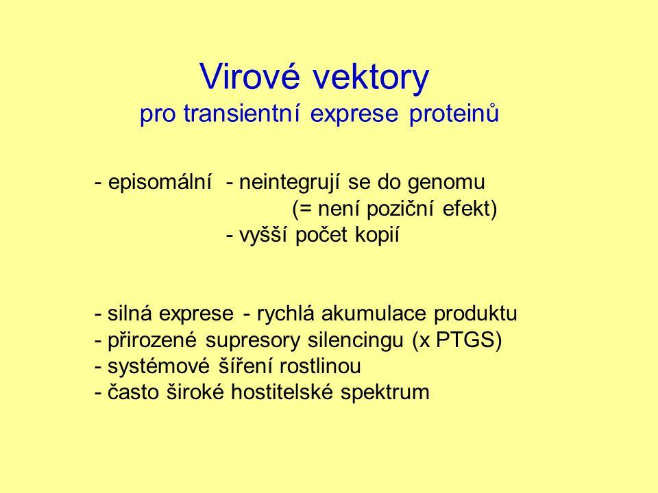 Virové vektory pro transientní exprese proteinů - episomální - neintegrují se do genomu (= není poziční efekt) - vyšší počet kopií - silná exprese - r