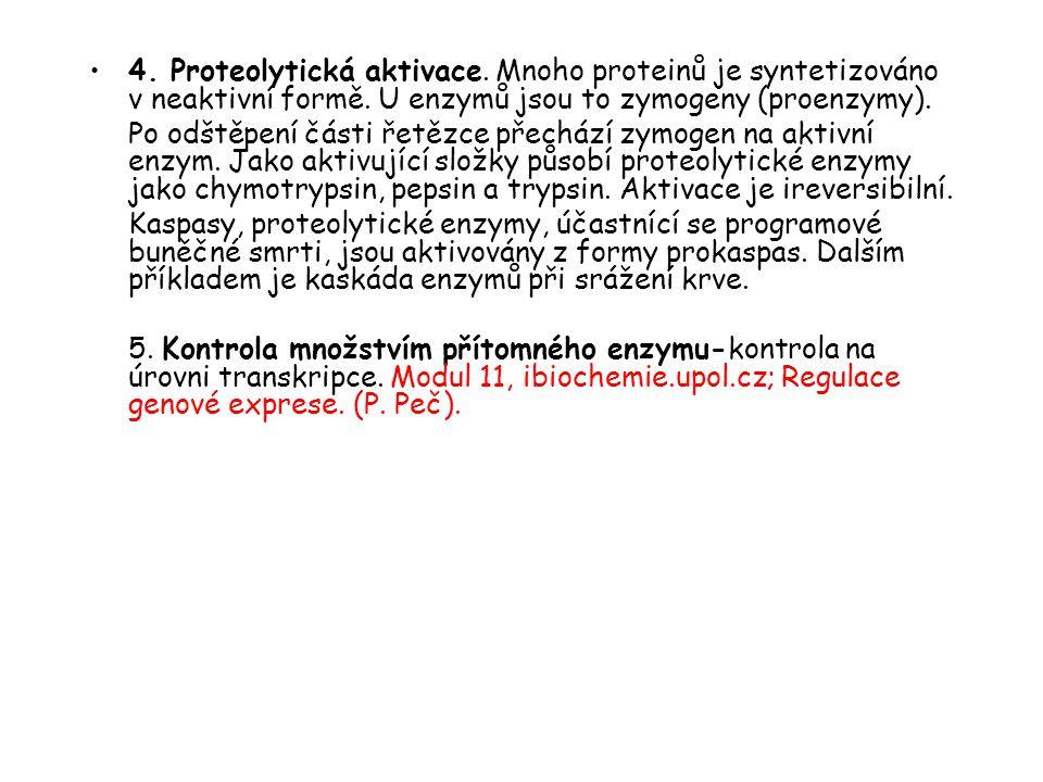 4. Proteolytická aktivace. Mnoho proteinů je syntetizováno v neaktivní formě. U enzymů jsou to zymogeny (proenzymy). Po odštěpení části řetězce přechá