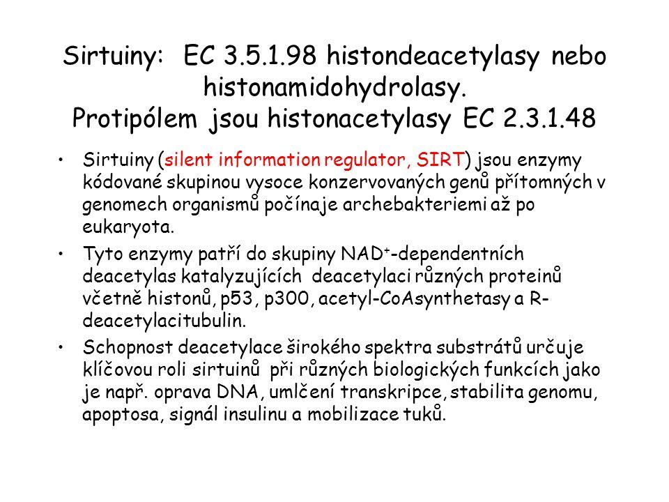 Sirtuiny: EC 3.5.1.98 histondeacetylasy nebo histonamidohydrolasy. Protipólem jsou histonacetylasy EC 2.3.1.48 Sirtuiny (silent information regulator,