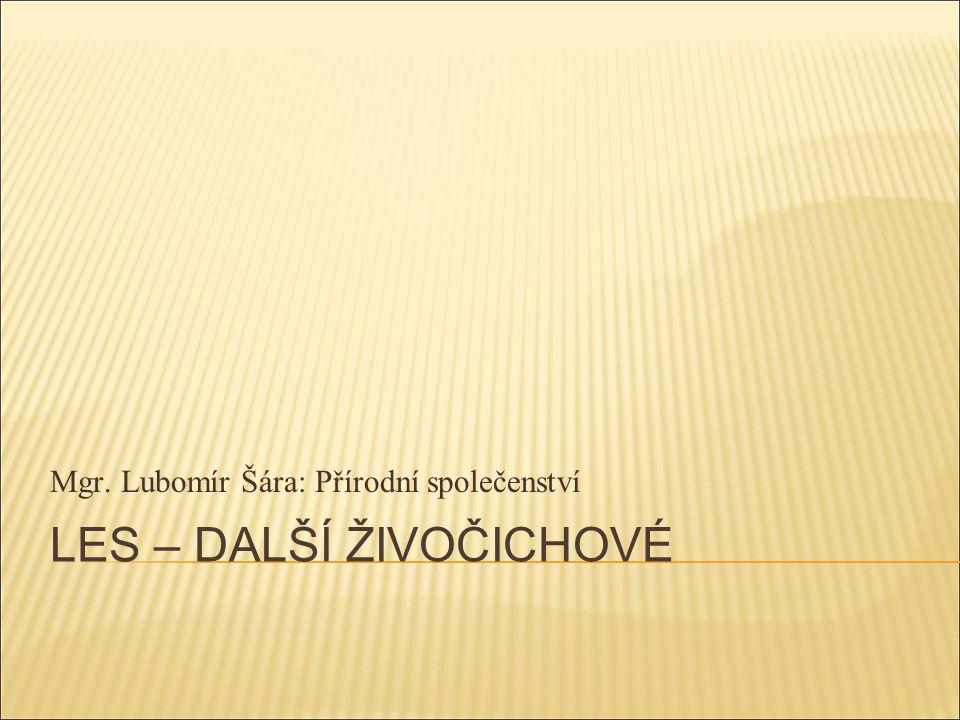 LES – DALŠÍ ŽIVOČICHOVÉ Mgr. Lubomír Šára: Přírodní společenství