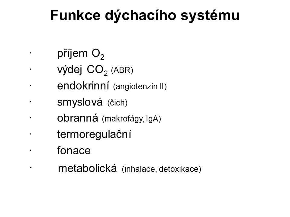 Funkce dýchacího systému · příjem O 2 · výdej CO 2 (ABR) · endokrinní (angiotenzin II) · smyslová (čich) · obranná (makrofágy, IgA) · termoregulační ·