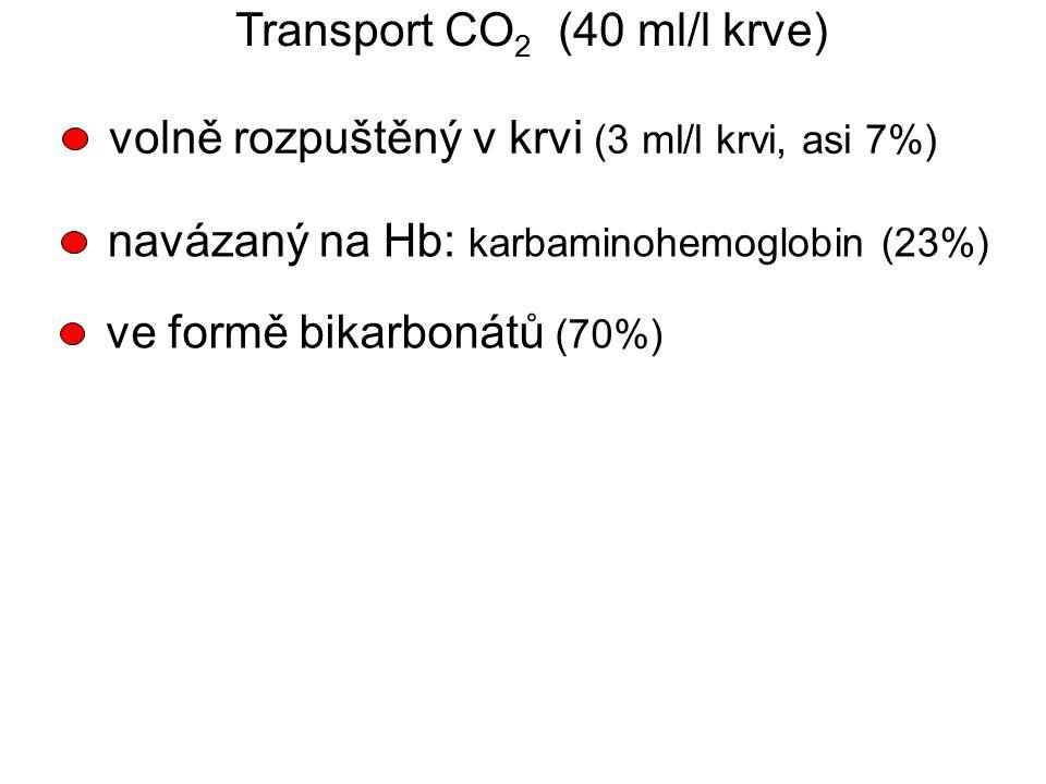 Transport CO 2 (40 ml/l krve) volně rozpuštěný v krvi (3 ml/l krvi, asi 7%) navázaný na Hb: karbaminohemoglobin (23%) ve formě bikarbonátů (70%)