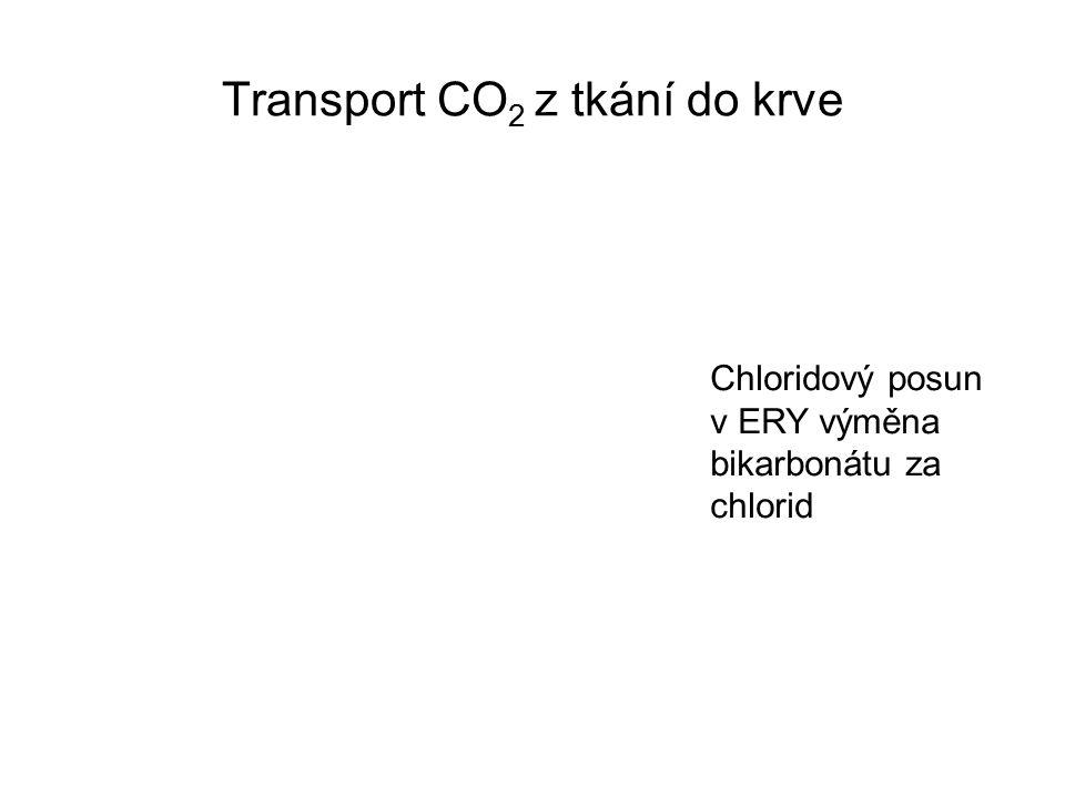 Transport CO 2 z tkání do krve Chloridový posun v ERY výměna bikarbonátu za chlorid