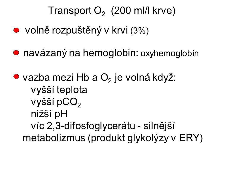 volně rozpuštěný v krvi (3%) navázaný na hemoglobin: oxyhemoglobin vazba mezi Hb a O 2 je volná když: vyšší teplota vyšší pCO 2 nižší pH víc 2,3-difos