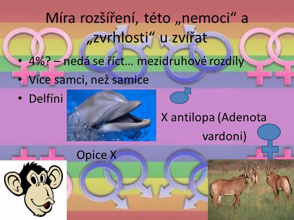 """Míra rozšíření, této """"nemoci"""" a """"zvrhlosti"""" u zvířat 4%? – nedá se říct… mezidruhové rozdíly Více samci, než samice Delfíni » X antilopa (Adenota » va"""