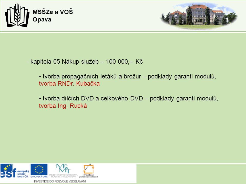 MSŠZe a VOŠ Opava - kapitola 05 Nákup služeb – 100 000,-- Kč tvorba propagačních letáků a brožur – podklady garanti modulů, tvorba RNDr.