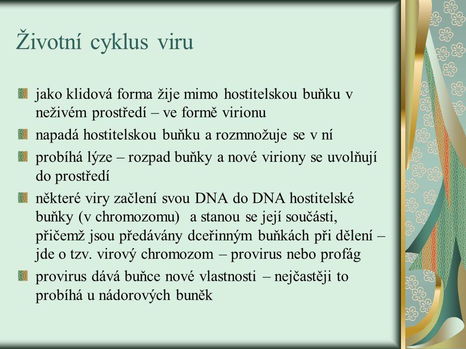 Životní cyklus viru jako klidová forma žije mimo hostitelskou buňku v neživém prostředí – ve formě virionu napadá hostitelskou buňku a rozmnožuje se v