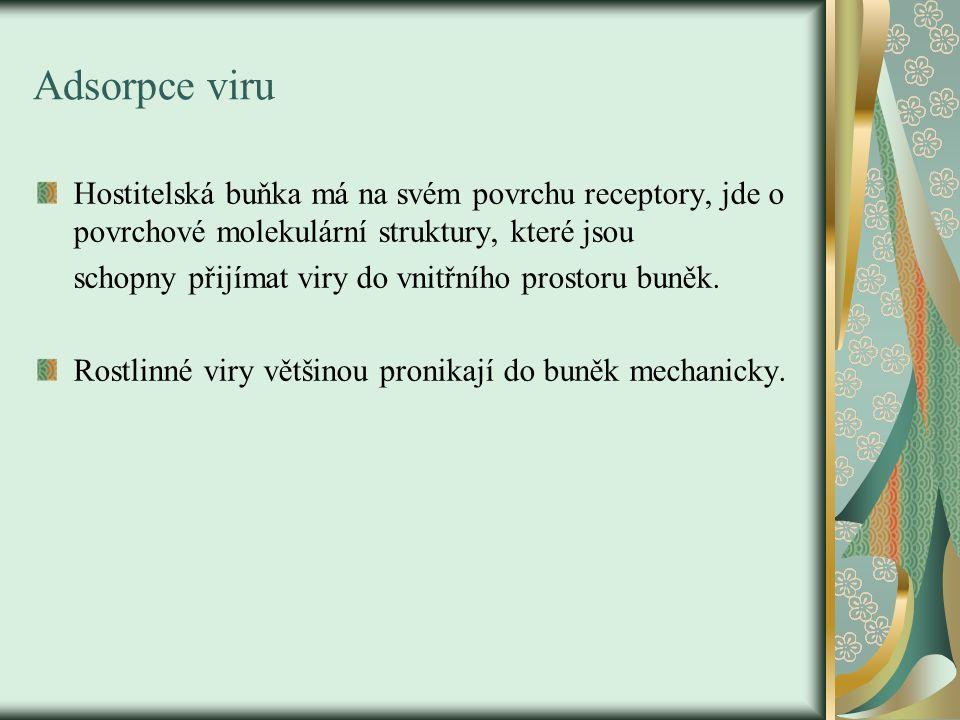 Penetrace viru Do buněk nemusí proniknout celý virus, ale pouze je nukleová kyselina, které nese jeho genetickou informaci.