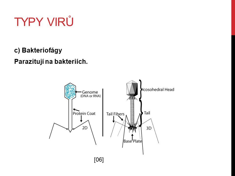 TYPY VIRŮ c) Bakteriofágy Parazitují na bakteriích. [06]