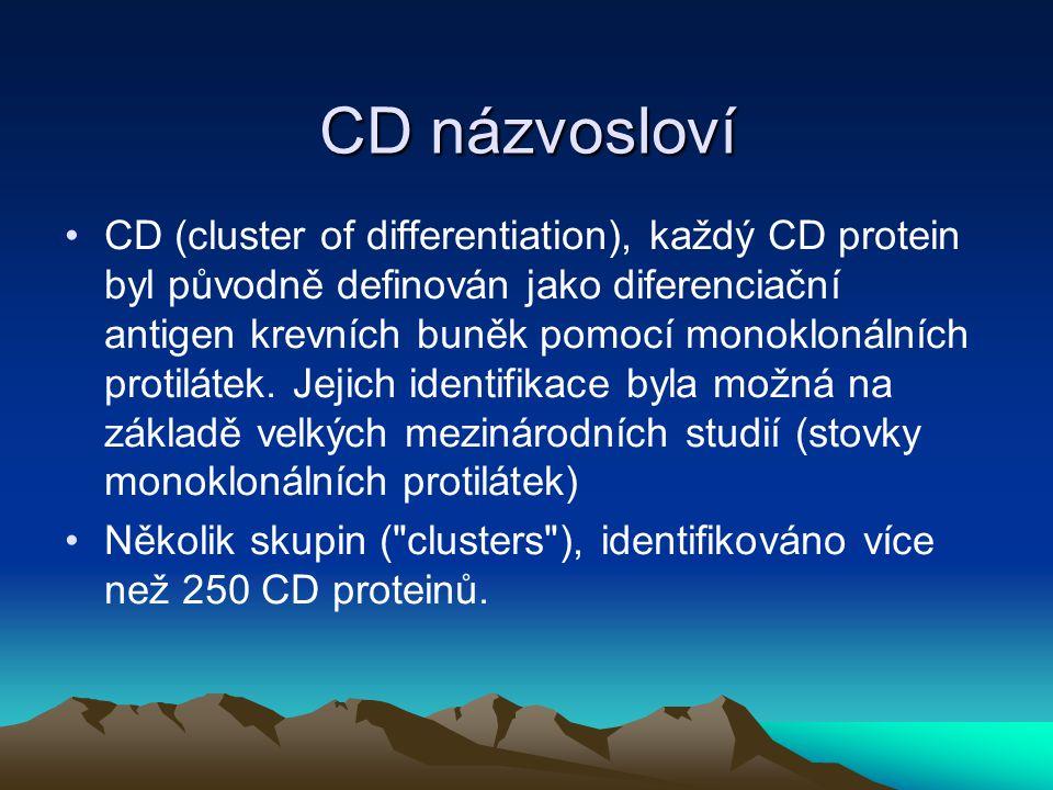CD názvosloví CD (cluster of differentiation), každý CD protein byl původně definován jako diferenciační antigen krevních buněk pomocí monoklonálních