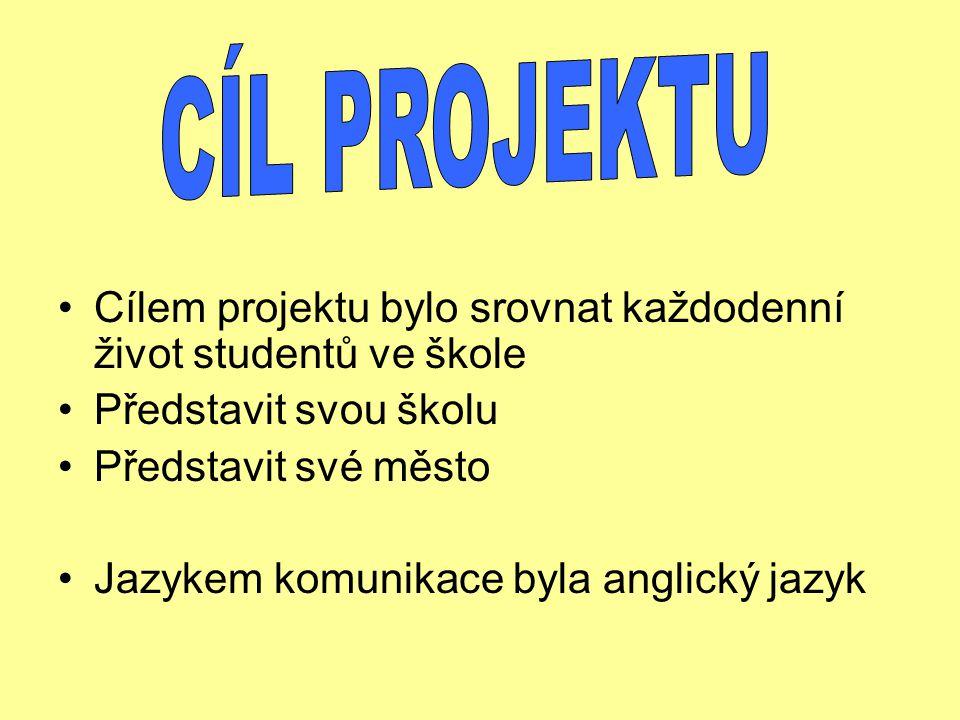 Jazykem komunikace byla angličtina. Studenti zvolili formu dokumentu Wordu a PowerPoint prezentace.