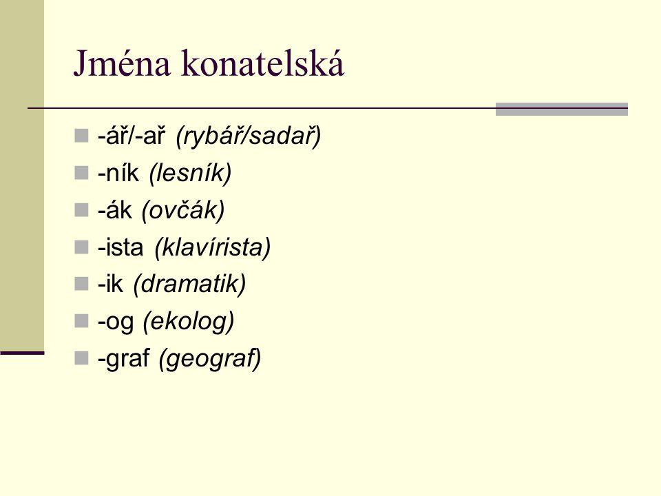 Jména přechýlená (osob) -yn-ě (sokyně, žákyně, soudkyně) -k-a (žačka, doktorka, malířka) -ic-e (dělnice, továrnice, bojovnice) -ov-á (králová, mistrová + příjmení) -n-a/-ov-n-a (princezna, královna, kněžna) -a (blondýna, bruneta, Daniela, Vladimíra) -in-a/-ín-a/-ie (Karolina, Pavlína, Evženie) Opačné (kmotr)