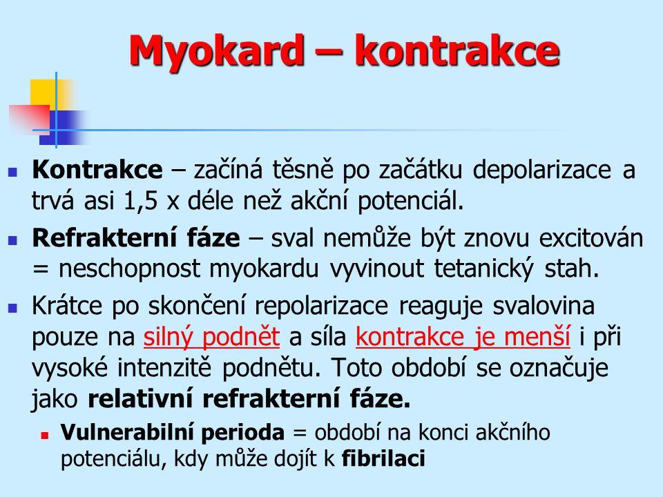 Myokard – kontrakce Kontrakce – začíná těsně po začátku depolarizace a trvá asi 1,5 x déle než akční potenciál. Refrakterní fáze – sval nemůže být zno