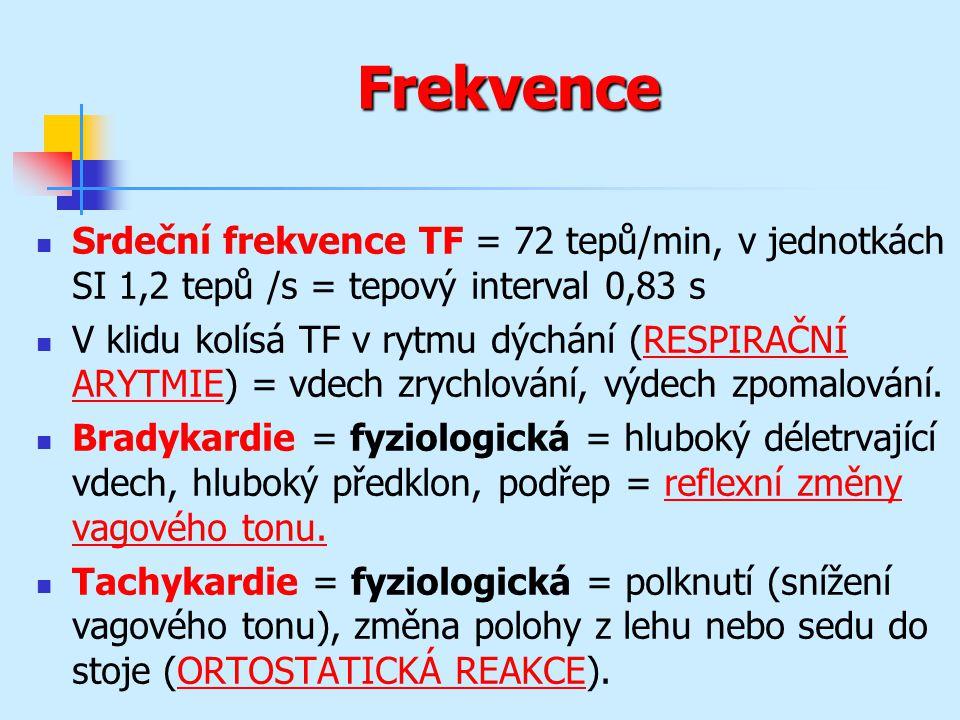 Frekvence Srdeční frekvence TF = 72 tepů/min, v jednotkách SI 1,2 tepů /s = tepový interval 0,83 s V klidu kolísá TF v rytmu dýchání (RESPIRAČNÍ ARYTM