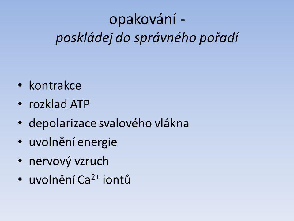 řešení - poskládej do správného pořadí nervový vzruch depolarizace svalového vlákna uvolnění Ca 2+ iontů rozklad ATP uvolnění energie kontrakce