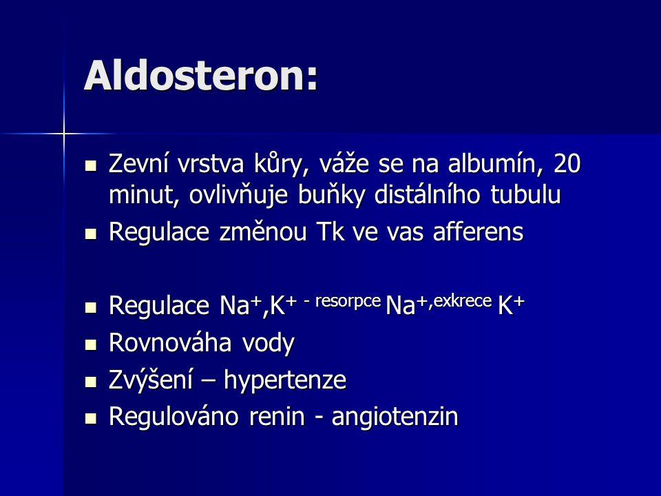 Aldosteron: Zevní vrstva kůry, váže se na albumín, 20 minut, ovlivňuje buňky distálního tubulu Zevní vrstva kůry, váže se na albumín, 20 minut, ovlivň