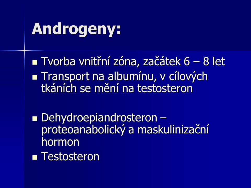 Androgeny: Tvorba vnitřní zóna, začátek 6 – 8 let Tvorba vnitřní zóna, začátek 6 – 8 let Transport na albumínu, v cílových tkáních se mění na testoste