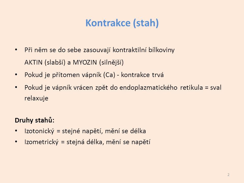 Kontrakce (stah) Při něm se do sebe zasouvají kontraktilní bílkoviny AKTIN (slabší) a MYOZIN (silnější) Pokud je přítomen vápník (Ca) - kontrakce trvá Pokud je vápník vrácen zpět do endoplazmatického retikula = sval relaxuje Druhy stahů: Izotonický = stejné napětí, mění se délka Izometrický = stejná délka, mění se napětí 2