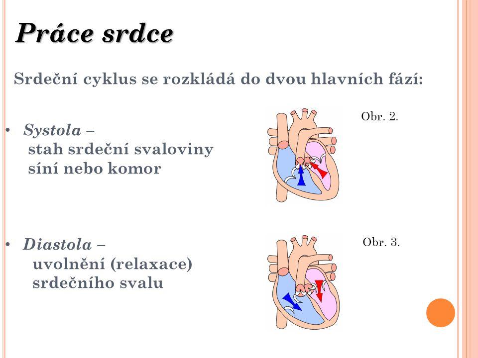 Srdeční cyklus se rozkládá do dvou hlavních fází: Systola – stah srdeční svaloviny síní nebo komor Diastola – uvolnění (relaxace) srdečního svalu Prác