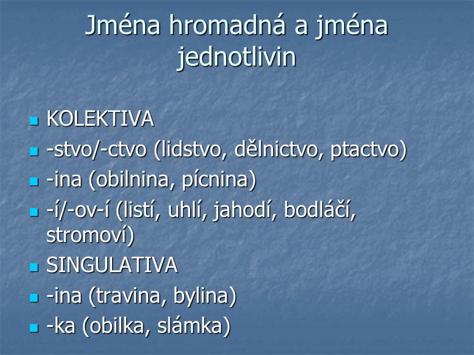 Jména hromadná a jména jednotlivin KOLEKTIVA KOLEKTIVA -stvo/-ctvo (lidstvo, dělnictvo, ptactvo) -stvo/-ctvo (lidstvo, dělnictvo, ptactvo) -ina (obiln