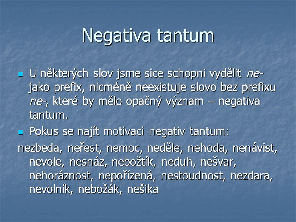 Negativa tantum U některých slov jsme sice schopni vydělit ne- jako prefix, nicméně neexistuje slovo bez prefixu ne-, které by mělo opačný význam – ne