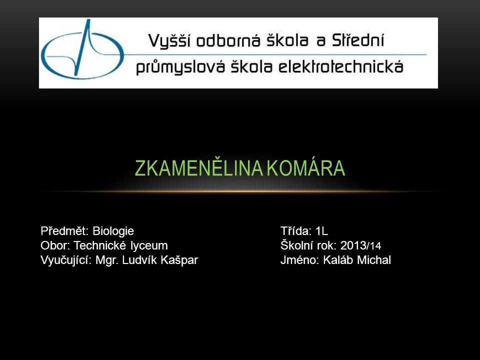 ZKAMENĚLINA KOMÁRA Předmět: BiologieTřída: 1L Obor: Technické lyceumŠkolní rok: 2013 /14 Vyučující: Mgr.
