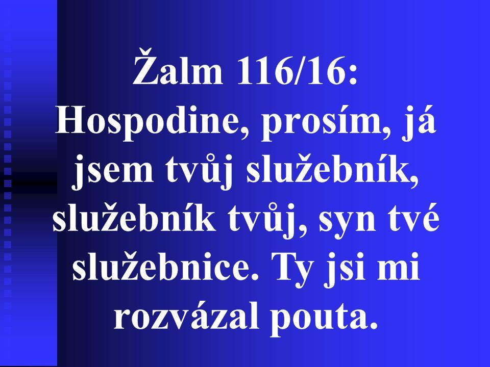 Žalm 116/16: Hospodine, prosím, já jsem tvůj služebník, služebník tvůj, syn tvé služebnice.